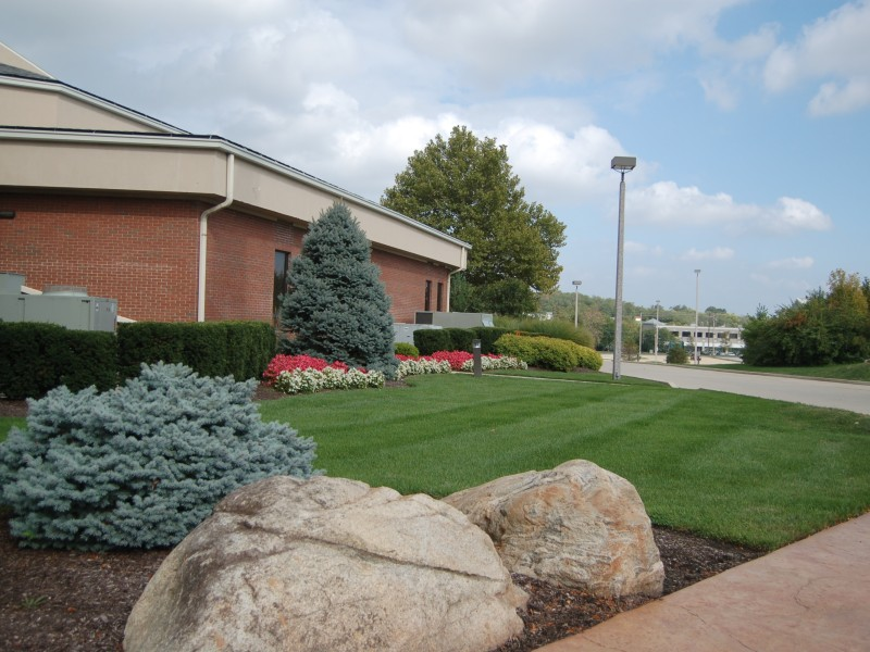 Commercial Landscape & Lawn Care