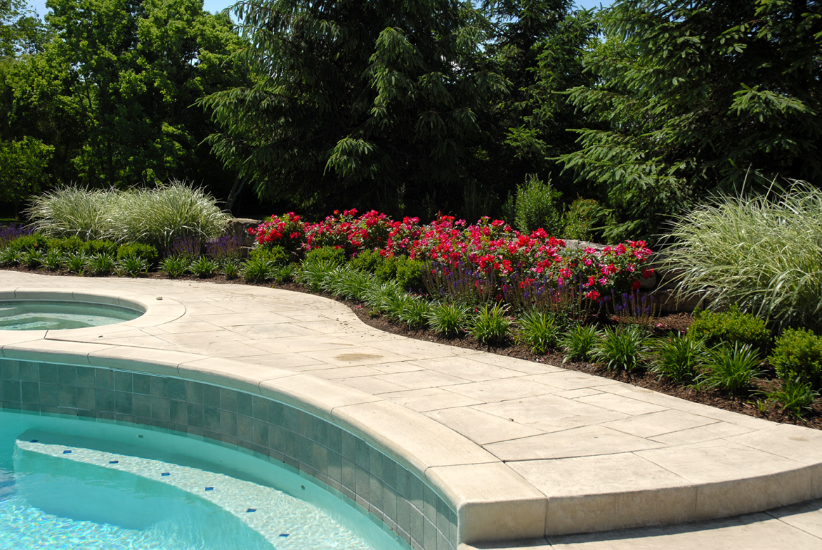 Pool Beds flower bed around a swimming pool - tinkerturf