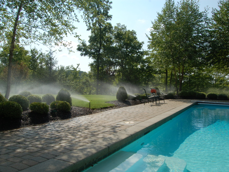 Pool Side Irrigation Sprays