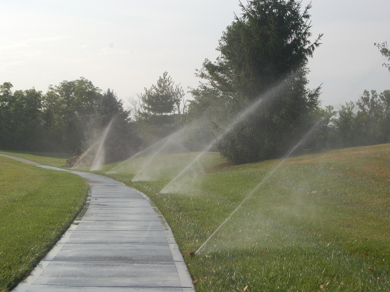 Neighborhood Sidewalk Rotational Sprinklers