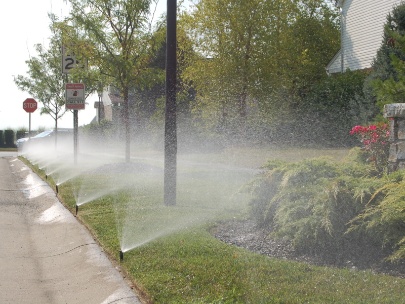 Neighborhood Irrigation Sprays